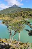 好的看法,火地群岛国家公园,乌斯怀亚,阿根廷 免版税库存图片