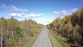 好的鸟瞰图加拿大桦森林和遥远的汽车在路 股票视频