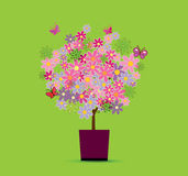 好的结构树 免版税库存图片