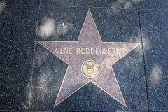 好莱坞星光大道基因星舰奇航记的Rodenberry创作者 库存图片