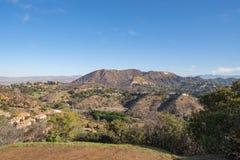 好莱坞标志看法从好莱坞Hills的 日观察的猫坐温暖晴朗的结构树 在蓝天的美丽的云彩 免版税库存照片