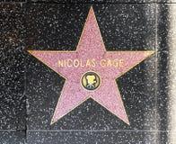 演员在名望好莱坞步行的尼古拉斯Cage的星  库存图片