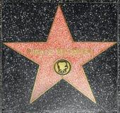 演员在名望好莱坞步行的皮尔斯Brosnans星  免版税库存照片