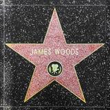 演员詹姆斯在名望好莱坞步行的森林的星  免版税库存照片
