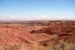 如在亚利桑那中看到的彩色沙漠春天 库存图片
