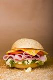 如此三明治! 免版税库存照片