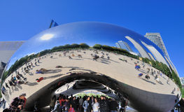 如银豆在千年公园,芝加哥 图库摄影