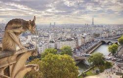 贵妇人notre巴黎视图 库存照片