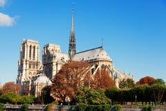 贵妇人notre巴黎 免版税图库摄影