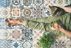 妇女、coffe和猫 免版税库存图片