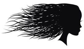 妇女与流动的头发的面孔外形 免版税图库摄影