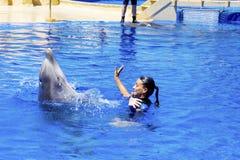 妇女与海豚的教练员游泳 免版税库存图片