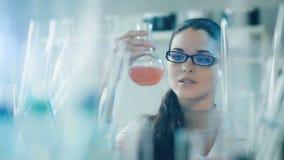 妇女与烧瓶一起使用在实验室 影视素材
