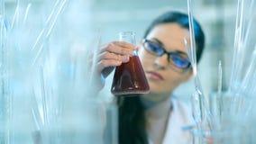 妇女与烧瓶一起使用在实验室 股票视频