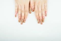 妇女与美好的修指甲的手特写镜头在白色背景 库存图片