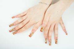 妇女与美好的修指甲的手特写镜头在白色背景 免版税库存图片
