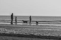 妇女两孩子和两条狗 免版税库存图片