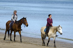 妇女乘驾马 免版税图库摄影
