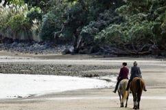 妇女乘驾马 免版税库存图片