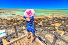 妇女享用Stromatolites 库存图片