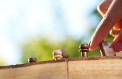 妇女作用棋在公园 免版税图库摄影