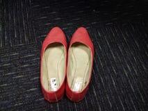 妇女使用的桃红色腹部鞋子  库存照片