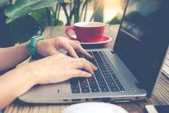 妇女使用膝上型计算机的,搜寻,检查,浏览信息在咖啡店,铜铍和噪声滤波器申请 库存照片