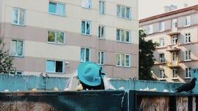 妇女假发的在太阳镜,在大型垃圾桶的蓝色帽子人 蠢事 观看某人 股票视频