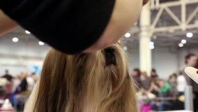 妇女做您的狗的时髦的理发 影视素材