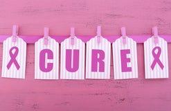 妇女健康了悟治疗消息的桃红色丝带慈善 库存照片