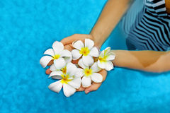 妇女健康 夏天 温泉在水中开花羽毛 健康, 库存图片