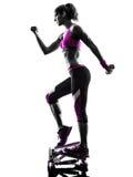 妇女健身步进重量锻炼剪影 免版税库存照片