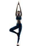妇女健身瑜伽excercises剪影 免版税库存照片