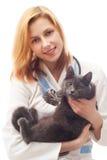 妇女兽医 图库摄影
