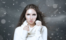 妇女冬天画象白色开士米毛线衣的 图库摄影