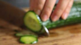 妇女切口黄瓜和烹调三文鱼鱼用米和黄瓜 影视素材