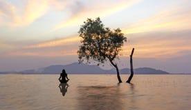 妇女剪影坐湖在美好的日落期间, 图库摄影