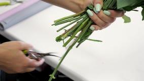 妇女卖花人切开与pruner的玫瑰词根在花店,手clsoeup 股票视频