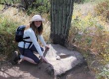 妇女发现Metate,踢马刺发怒大农场保护地区 免版税图库摄影
