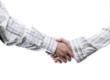 妇女和人企业握手 库存图片