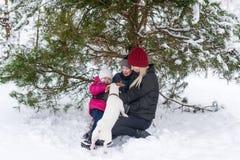 妇女和她的小孩使用与在雪的一条狗在冷杉木下 免版税库存图片