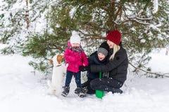 妇女和她的小孩使用与在雪的一条狗 免版税库存图片