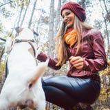 妇女和她的狗在嬉戏的心情 库存照片
