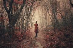 妇女和有雾的森林。 免版税库存照片