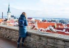 妇女和海鸥在观察点Toompea小山 塔林的历史部分作为背景 免版税库存图片