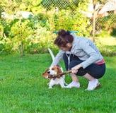 有小猎犬的妇女 库存图片