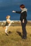妇女和狗使用 免版税库存照片