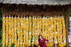 妇女和玉米 库存图片