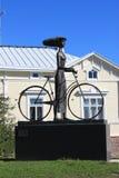 妇女和自行车 免版税库存照片