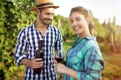 妇女品尝酒在葡萄园里 库存照片